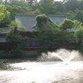 写真: 井之頭公園の神社の祠