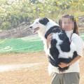 写真: agin抱っこ