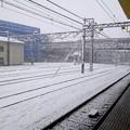 高幡不動駅の雪景色(東京都日野市)