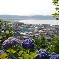 長谷寺からの眺め