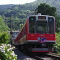 Photos: 箱根登山鉄道1000形