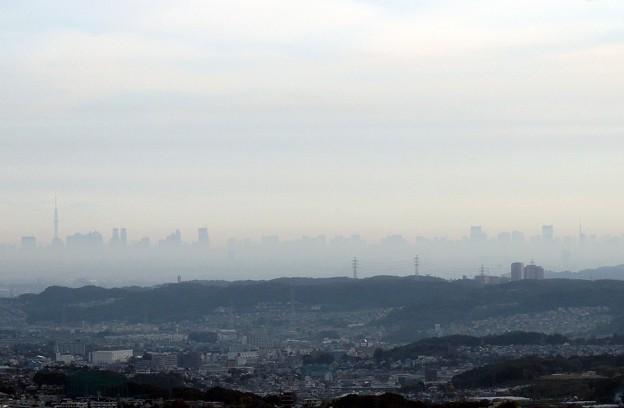 朝の都心風景