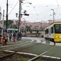 花見電車(4)