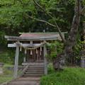 写真: 配志和神社・八雲神社