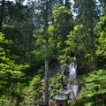 写真: 出羽神社・祓川と須賀の滝