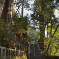 写真: 榛名神社・参道