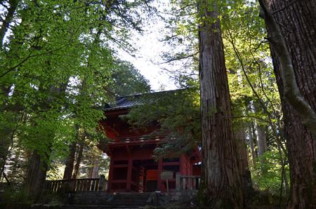 滝尾神社・楼門