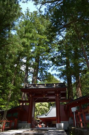日光二荒山神社・神門