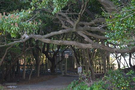 粟皇子神社3