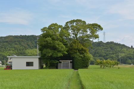 加努弥神社6