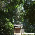 写真: 蚊野神社・蚊野御前社2