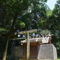 写真: 蚊野神社・蚊野御前社4