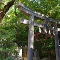 後藤神社01