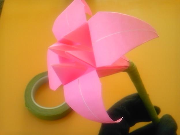 ハート 折り紙 菖蒲 折り紙 : photozou.jp
