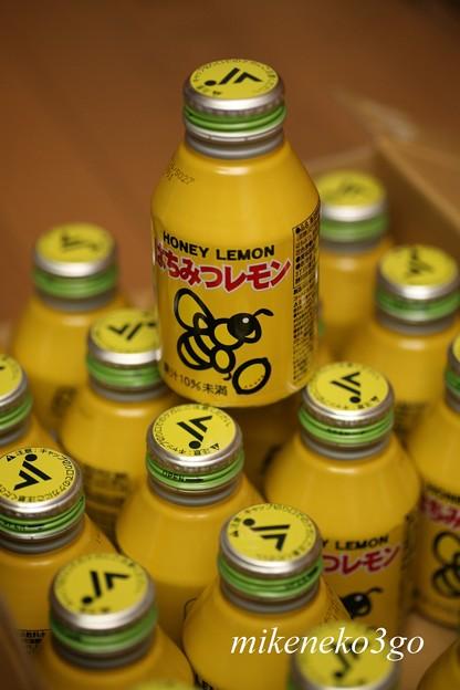 Photos: はちみつレモン
