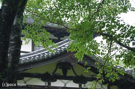 奈良国立博物館仏教美術資料研究センター2012年08月14日_DSC_0395