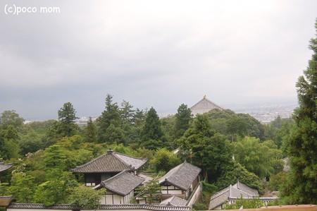 東大寺2012年08月14日_DSC_0433