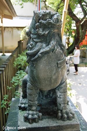 櫛田神社石堂神社前の狛犬2012年08月18日_DSC_0582