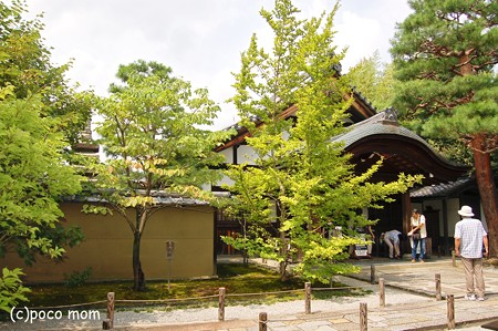 大徳寺 大仙院