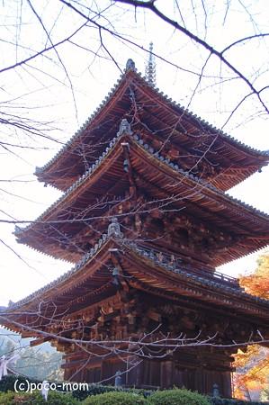 三井寺三重塔2012年11月25日_DSC_0145