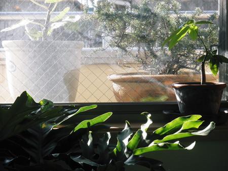 2012年12月09日_PC090055