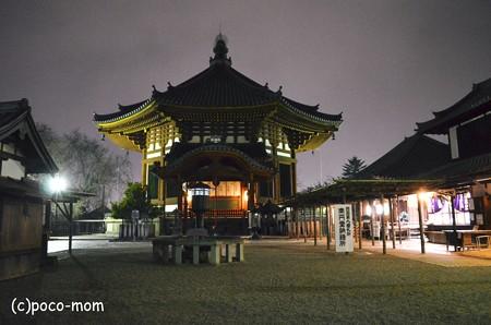興福寺 夜の南円堂2013年01月13日_DSC_0335