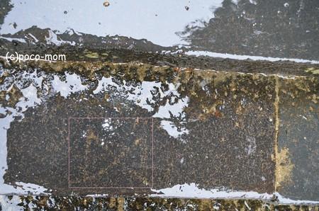 東大寺二月堂石段の模様 ますかけ005