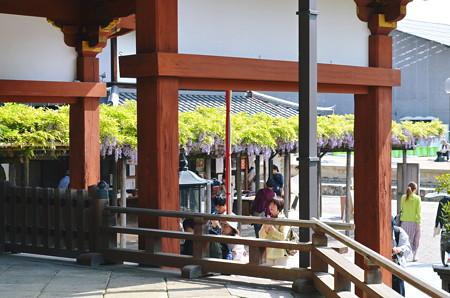 興福寺南円堂2013年04月29日_DSC_0214