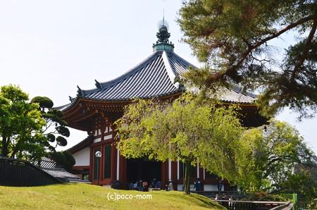 興福寺南円堂2013年04月29日_DSC_0216