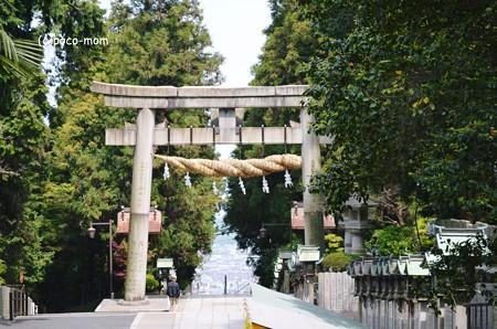 生駒山宝山寺 鳥居2013年04月29日_DSC_0421