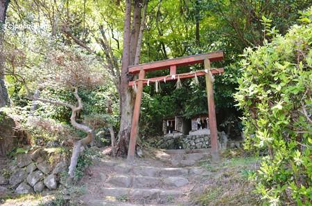 生駒山岩谷の滝2013年04月29日_DSC_0361