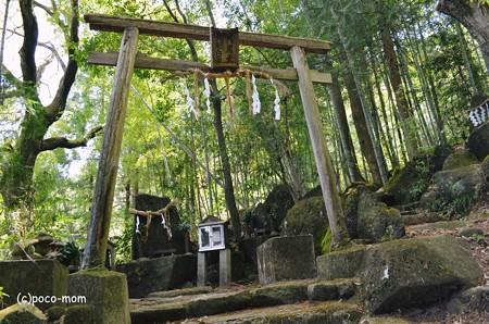 生駒山岩谷の滝2013年04月29日_DSC_0372