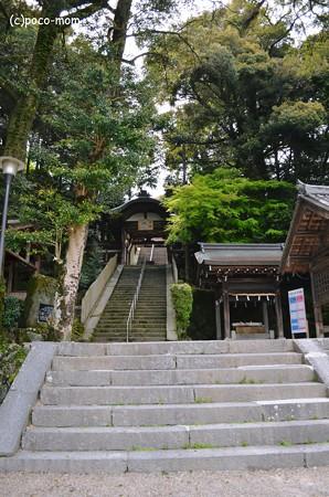 往馬神社2013年04月29日_DSC_0435
