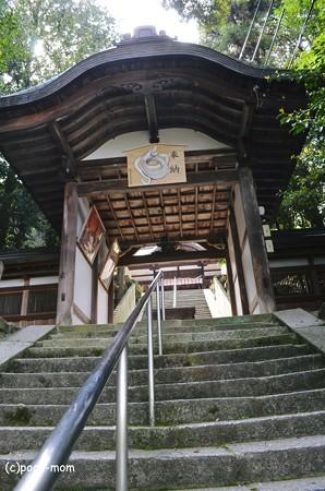 往馬神社2013年04月29日_DSC_0439
