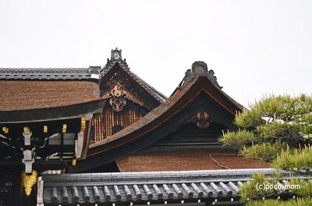 西本願寺2013年04月29日_DSC_0494