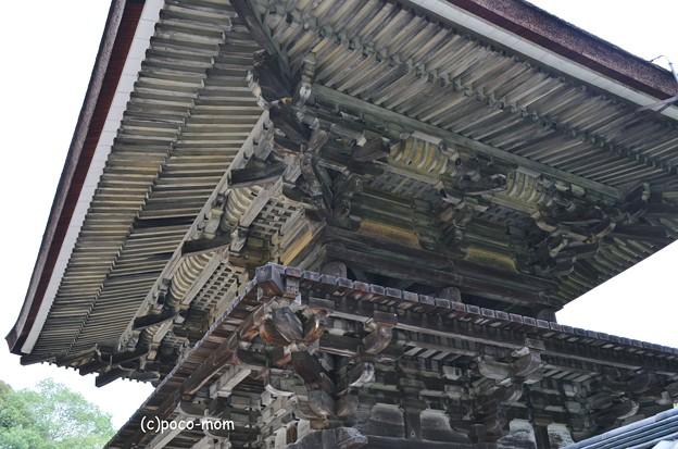 円成寺楼門2013年08月16日_DSC_0295
