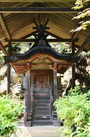 円成寺2013年08月16日_DSC_0307