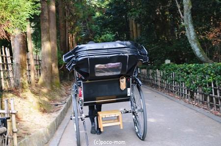 嵯峨嵐山2013年11月24日_DSC_0065