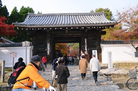 嵯峨嵐山 二尊院2013年11月24日_DSC_0067