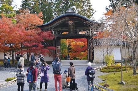 嵯峨嵐山 二尊院2013年11月24日_DSC_0084