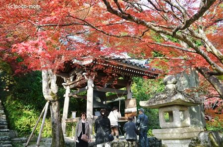 嵯峨嵐山 二尊院2013年11月24日_DSC_0094