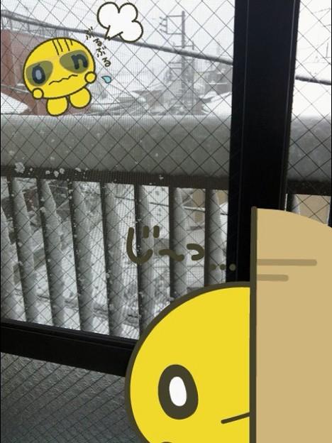 雪は吹雪よ。どこまでも…。こちら神奈川のとある場所…