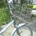 写真: 自転車でゴー!