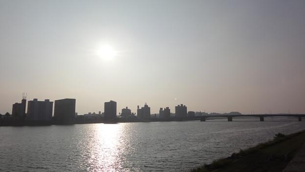大淀河畔「橘公園」5