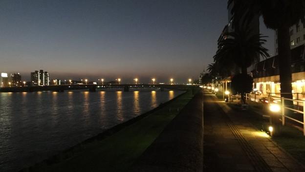 大淀河畔・夜景2