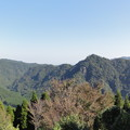 Photos: 椿山森林公園にて1