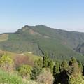Photos: 椿山森林公園にて2