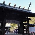 Photos: 宮崎神宮「大祓祭」2