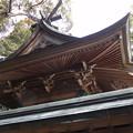写真: 生目神社10