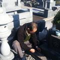 11月の墓参り1